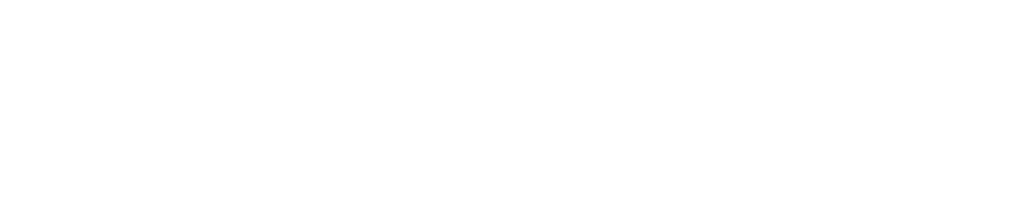 Assisting the economic growth of Vietnam through development of industrial parks, condominiums, serviced apartments, and the hotel business